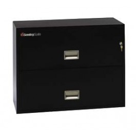 2L3610 Sentry Fire File - black